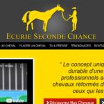 reconversion chevaux de course à L
